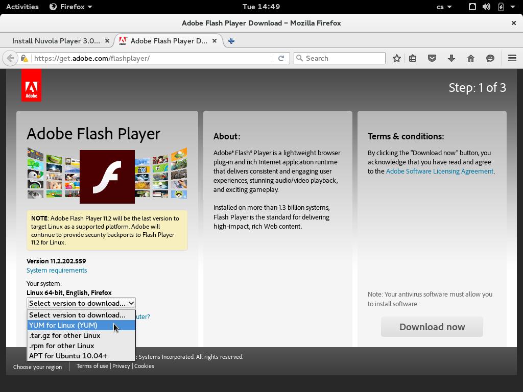 Adobe - Adobe Flash Player Download
